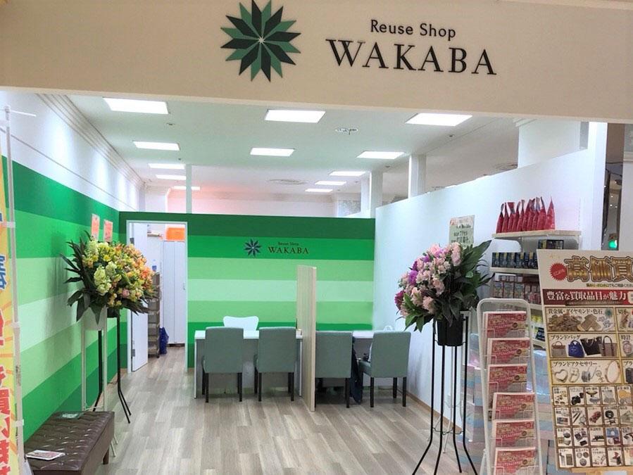 wakaba-アイキャッチ